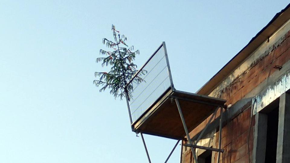 Gleichenbaum